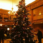 Infobox_sea_lovelylanvin_georgian_tree