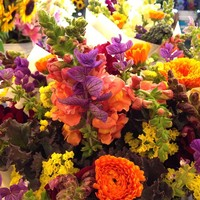 Full_phx_juxtapalate_pikeplace_flowergram