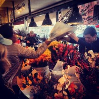 Full_lax_cocoxochitl_pikeplace_flowervendor