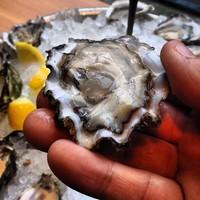Full_lax_cocoxochitl_taylorshellfish_oyster